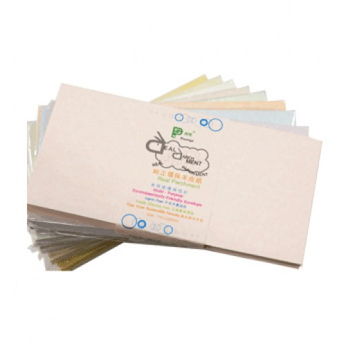 Real Parchment DL Envelope