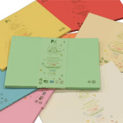 RECYCOLOURS Recycled C5 Envelope